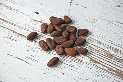 cocoa_bean